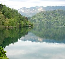Lake Bled - Slovenia by Arie Koene