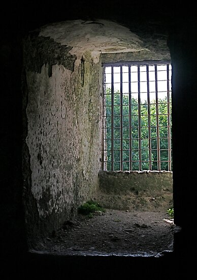 Window from inside Blarney Castle, County Cork, Ireland by Mary Fox