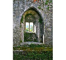 Foliage on Blarney Castle Window, County Cork, Ireland Photographic Print