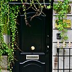 "Dublin Door with a ""center"" door knob, Dublin, Ireland by Mary Fox"