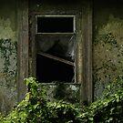 secret window by Nikolay Semyonov