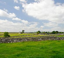 Strip Fields South of Litton  by Rod Johnson