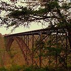 New River Gorge Bridge by wallace66