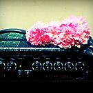Flowers on amp by googieosbourn