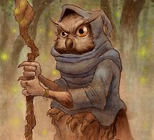 Ugla the Owl Wizard by elykpaint