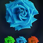 Blue Rose by nigelchaloner