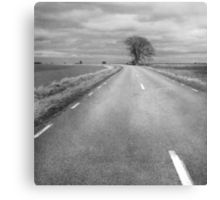 Country Road Less Traveled Canvas Print