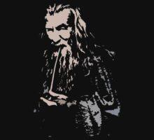 Gandalf by Colester