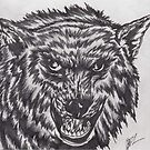 angry wolf pencils by daniel lamb