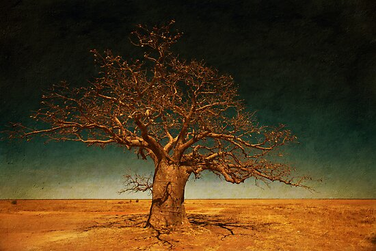 The Dinner Tree by Mel Brackstone