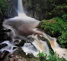 Stanley Ghyll Force by Stewart Smith