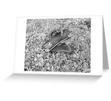 Summer shoes forgotten Greeting Card