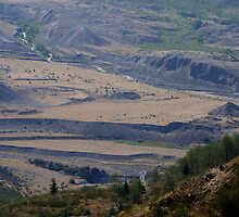 Mt St Helens National Monument by Loisb