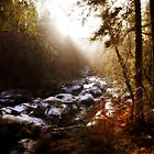 Dreamy River by fraser68