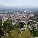 Derelict castle view of mountains and giant cacti Mula Murcia Spain by Grace Johnson