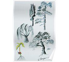 Tree Evolution Poster