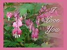 I Love You Greeting Card - Floral Bleeding Heart by MotherNature