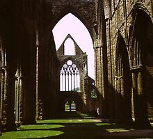 Tintern Abbey by diggle