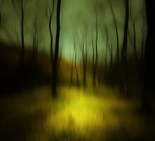 THE SILENCE WINDS BLOWING THOUGH THE FOREST by leonie7