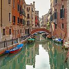 Venice by Robyn Carter