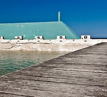 Newcastle Ocean Baths by Liz Percival