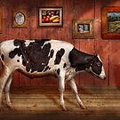 Animal - The Cow by Mike  Savad