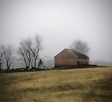 The Old Barn by Gail Falcon
