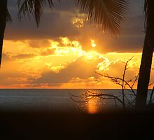 Cuban Sunrise by vette
