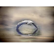 Wings of time Part III Photographic Print