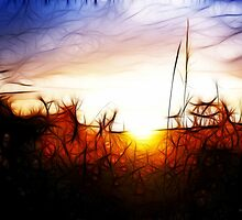 Abstract Sunset by swcphotography