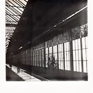 Amstel Station, Amsterdam The Netherlands by M. van Oostrum