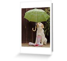 They said rain today! Greeting Card