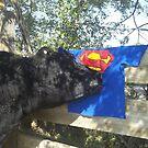 Super Jobie's Gift by JobieMom
