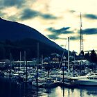 Early Morning In Ketchikan Harbor, Alaska by NSauer01
