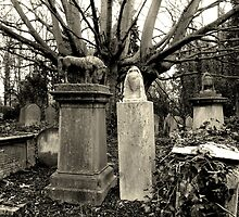 Highgate Cemetery by Federica Gentile