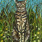 Tabby Cat by Elle J Wilson