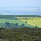 View of Teeside Coast from edge of North Yorks Moors by acespace