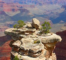 Grand Canyon Outcropping by Daniel Owens