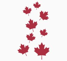 Canada maple leafs by Designzz