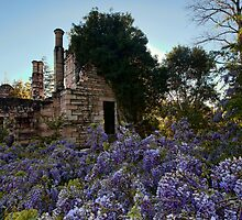 Eurama Ruins - Faulconbridge NSW by Malcolm Katon