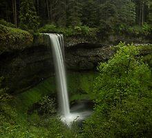 South Falls by Kay Martin