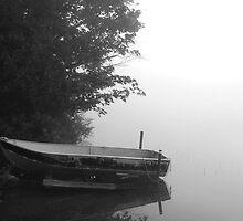 Morning Solitude by Joanne  Bradley