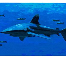 Shark by David  Kennett