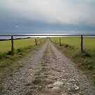 Track to the fleet estuary by Gary Heald LRPS