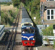Little Train Dymchurch by victor55