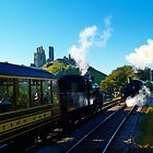 Passing at Corfe 2 by Mike Streeter
