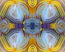X-Wing (Laguna Lace Agate) by Stephanie Bateman-Graham