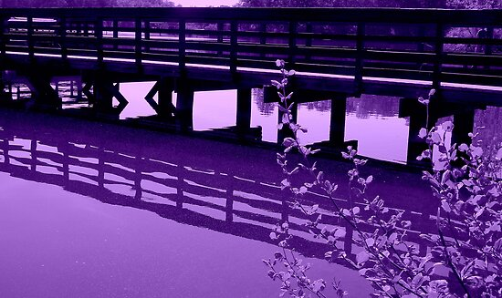 LAVENDER PIER  ^ by ctheworld