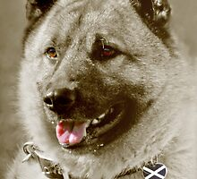 Yes Scotland Dog by simpsonvisuals