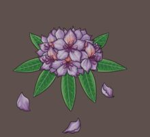 Rhododendron ponticum (No Text) by Paintz